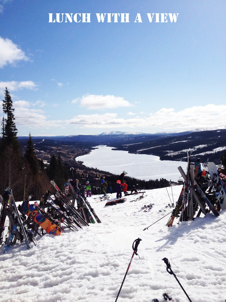 skidor copy